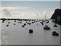 SX9372 : Teignmouth harbour, Shaldon shore, incoming tide by Robin Stott