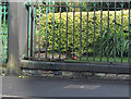SD7007 : Bench mark, St Philip's Church by Alan Murray-Rust