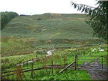 SJ0124 : Hillside in Upper Cwm Llech by Jeremy Bolwell