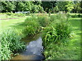 TQ2668 : Tributary of the River Wandle in the Rose Garden, Morden Hall Park by Marathon