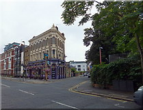 TQ3179 : The Pineapple Public House, Hercules Road, Lambeth by PAUL FARMER