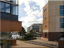 ST1974 : Cardiff Docks  Redevelopment by David Dixon