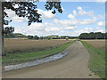 SE6675 : Walkers approaching Hovingham by Pauline E