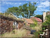NT6578 : Rural East Lothian : West Barns Farm, West Barns by Richard West