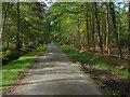 SU8966 : Blane's Lane by Alan Hunt
