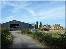 TQ9963 : Approaching Luddenham Court Farm by pam fray