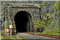 C7536 : Downhill railway tunnel by Albert Bridge
