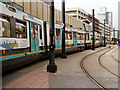SJ8498 : Tram Jam on High Street by David Dixon