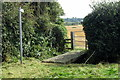 SP9434 : Path to Birchmoor Lodge by Philip Jeffrey