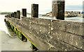 C9242 : Groynes, Portballintrae (2) by Albert Bridge