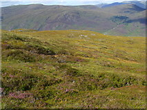 NH2630 : Ridge north of Carn Loch na Gobhlaig above Glen Cannich, Inverness by ian shiell