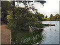 SJ6576 : Budworth Mere, Boat House by David Dixon