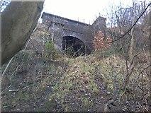 SJ9698 : Cocker Hill Railway Tunnel, eastern exit by Tom Hindley