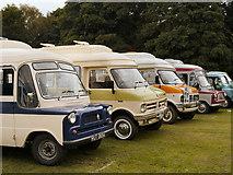 SD8203 : Dormobiles at Heaton Park by David Dixon