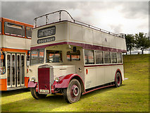 SD8203 : Leyland PD2 at Heaton Park by David Dixon