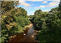 NZ0813 : River Greta by Peter McDermott