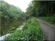 SE1039 : Driveway alongside the River Aire, Bingley by Humphrey Bolton