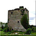 R5159 : N18 E20 West of R445 - Cratloe Tower House (1500s) by Suzanne Mischyshyn