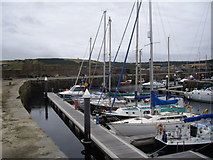 NJ6864 : Yachts in Banff Marina by Stanley Howe