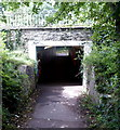 ST1629 : A358 underpass, Bishops Lydeard by Jaggery