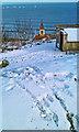 TA0487 : Snow to Sea by Scott Robinson