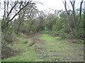 SP2186 : Dismantled railway near Hawkeswell Farm by Robin Stott