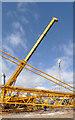 SK7653 : Crane for a crane  by Alan Murray-Rust