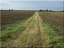 TL1459 : Farm track (footpath) near Honeydon by JThomas