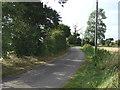 TL1460 : Lane heading north towards Staploe by JThomas