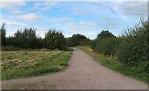 TQ5683 : Path at Cely Woods by Roger Jones