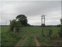 SE3265 : Unusual pylon on the Ripon Rowel Walk by John Slater