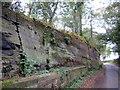 SJ4955 : Sandstone Cutting on Bolesworth Hill Road by Jeff Buck