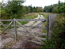 SK2270 : Track leading to Birchill Bank Wood by Graham Hogg