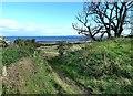 NS3019 : The Ayrshire Coastal Path by Mary and Angus Hogg