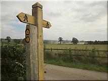 SJ9030 : Footpath sign, Pirehill House by Derek Harper