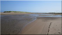 NU0545 : North Low, Cheswick Sands by Richard Webb