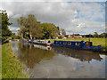 SJ9584 : Macclesfield Canal by David Dixon