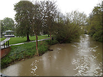SP3165 : River Leam in spate, 1 May 2012 (1 of 2) by Robin Stott