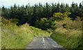 J3788 : The Knockagh Road, Carrickfergus (3) by Albert Bridge