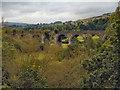 SK0084 : Railway Viaduct, Goyt Valley by David Dixon