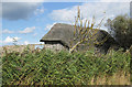 TG0544 : Reed-thatched hide, Cley Marshes by Pauline E
