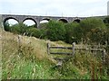 SO1310 : Nine Arches Viaduct, Tredegar by Robin Drayton