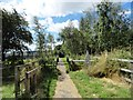NZ2360 : Path into Watergate Country Park by Robert Graham