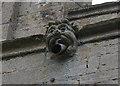 TF0733 : Gargoyle, St Andrew's church, Folkingham by J.Hannan-Briggs