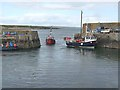 X7498 : Fishing boats entering Slade Harbour by Oliver Dixon