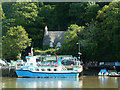 SX8654 : Greenway Ferry and Greenway Quay by Chris Allen