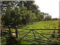 SY2894 : Gate and stile, Musbury Castle by Derek Harper