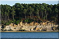 SZ0188 : Brownsea Island, Dorset by Peter Trimming