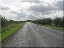 NZ2117 : Dere Street (B6275) by peter robinson