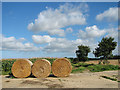 TF9731 : Straw bales beside the footpath to Barney by Evelyn Simak